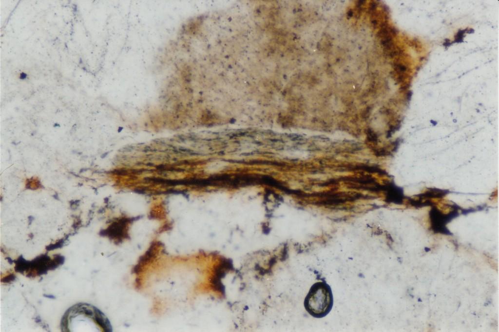 oxidized biotite shock effekt Azuara impact