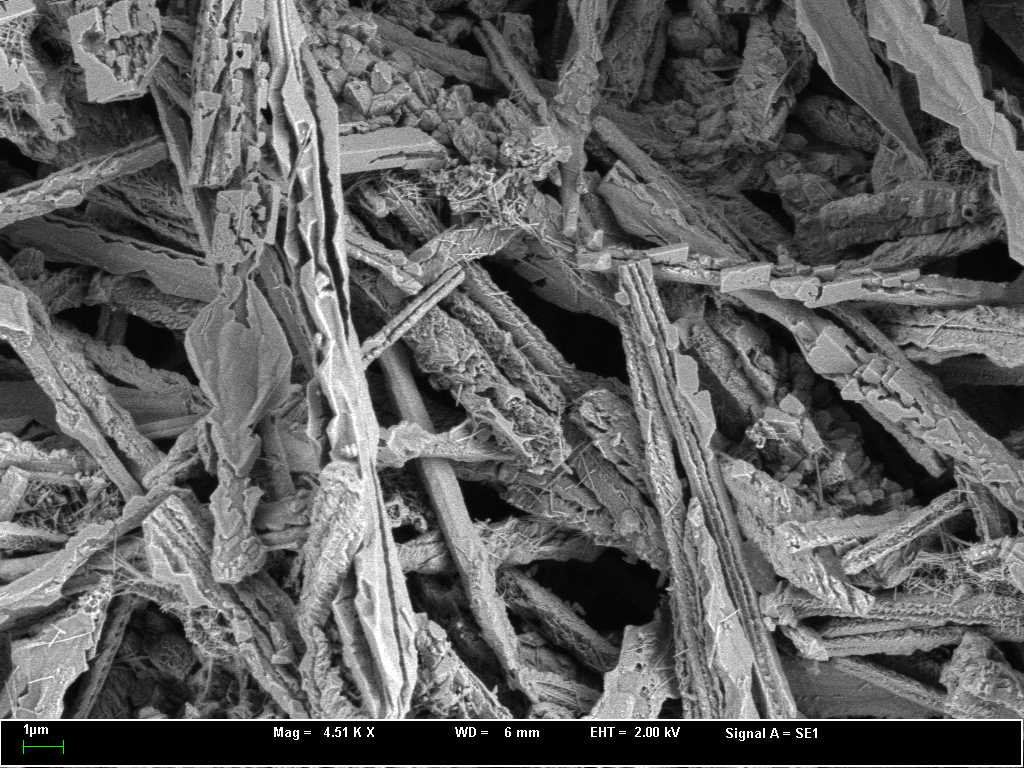 sem-dendritic-crystallites carbonate melt