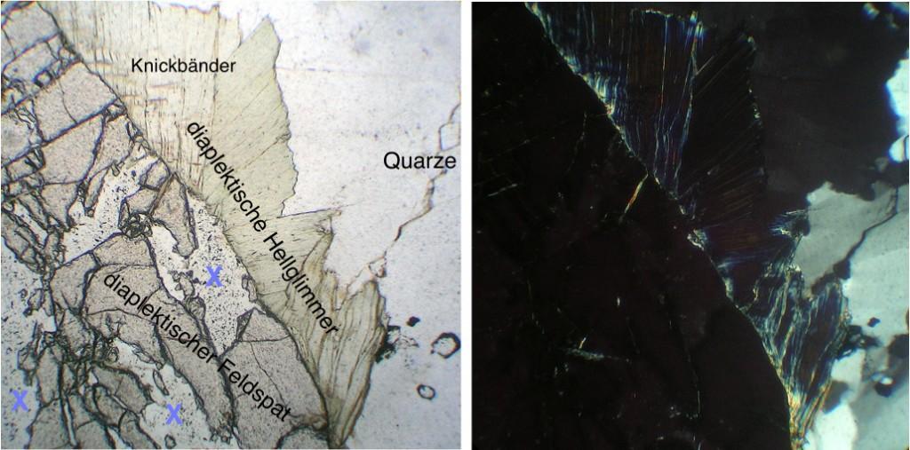 Dünnschliffaufnahme diaplektische Glimmer und Feldspäte xx und II