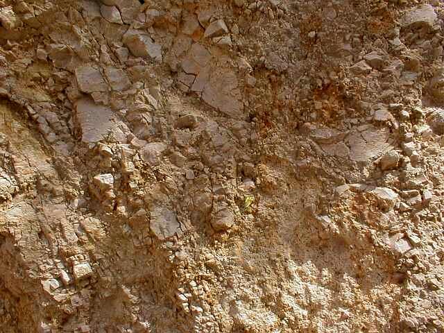 Nahaufnahme der Vergriesung in der Fremdscholle von Iggenhausen Ries-Krater