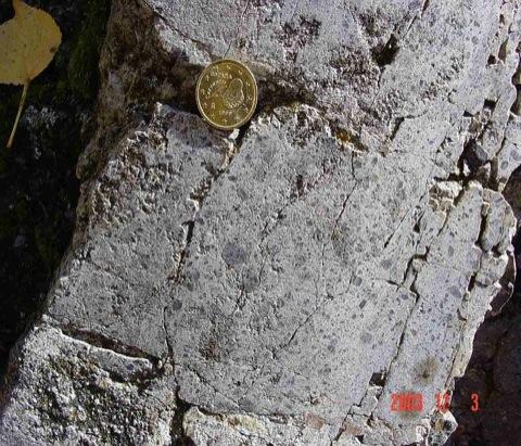 Mörtelgefüge im Muschelkalk des Olalla-Blocks